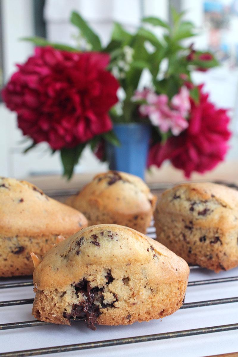 muffins-vegan-chocolat