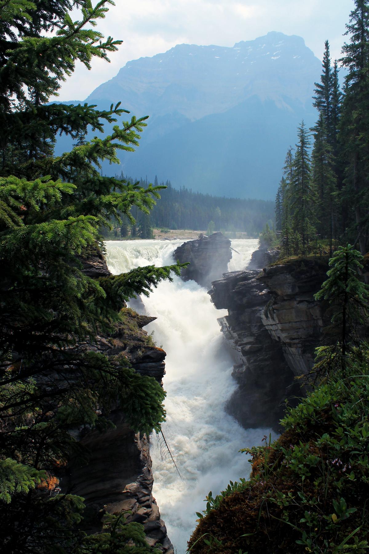 sunwapta falls canada 2